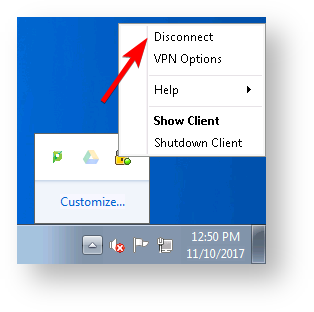 Check Point VPN Disconnect screen shot